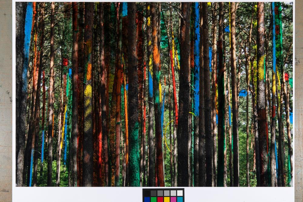 Peter Mells - Tibet 16.5.2016 86x130cm Foto Eiweißlasur