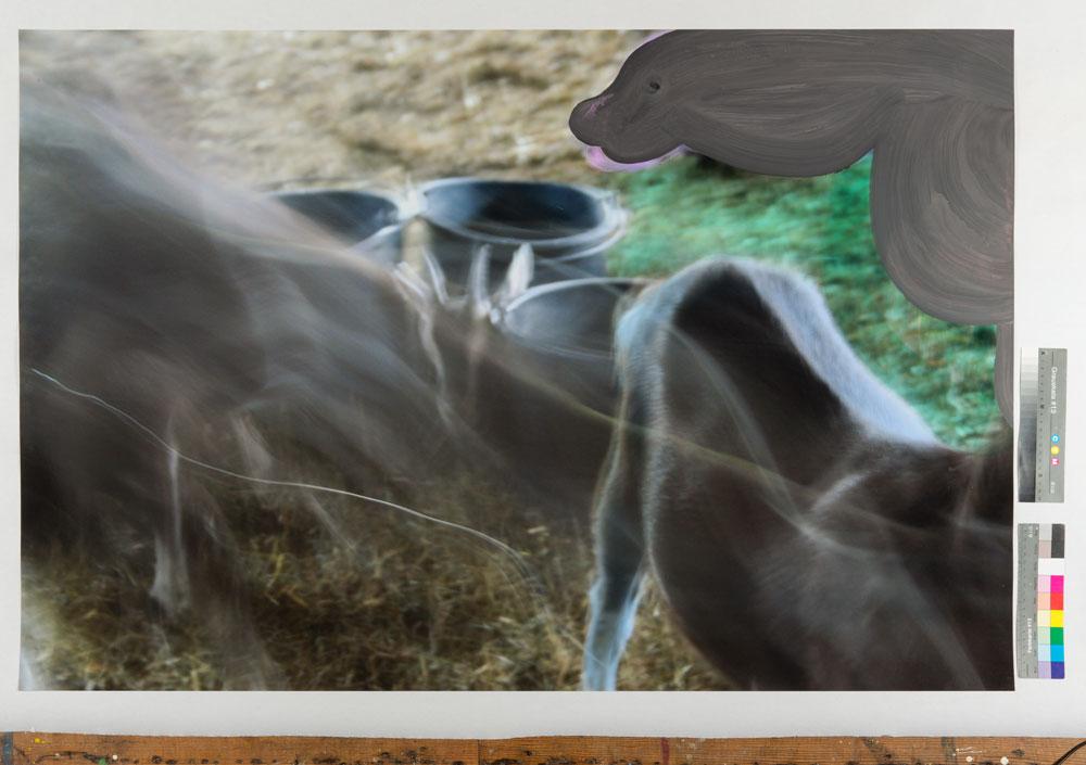 Peter Mells - Ziegen 87x130cm Foto übermalt 2017